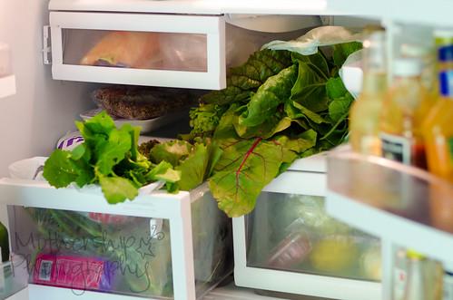 CSA分享在冰箱里