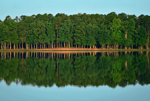 Lake Willastein Reflections