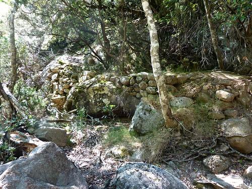 Remontée du Carciara : vers la fin du chemin après le canyon en RD