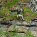 Geocaching - Glasgow's Hardest by davidmcnuh