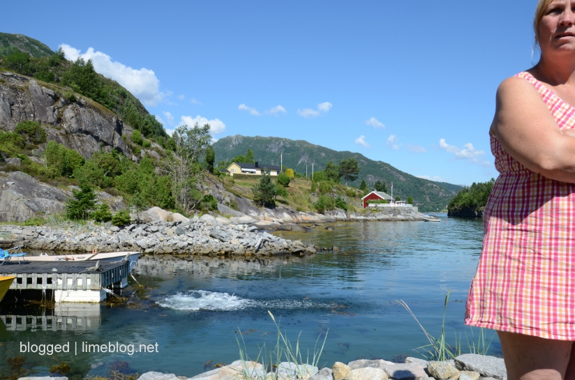 summer vacation 2012 | by the fjord