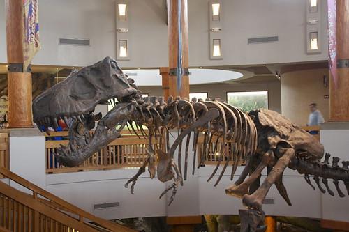 Jurassic Park Visitor's Center