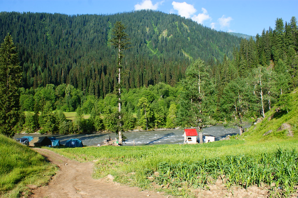 "MJC Summer 2012 Excursion to Neelum Valley with the great ""LIBRA"" and Co - 7607859634 ddd807399e b"
