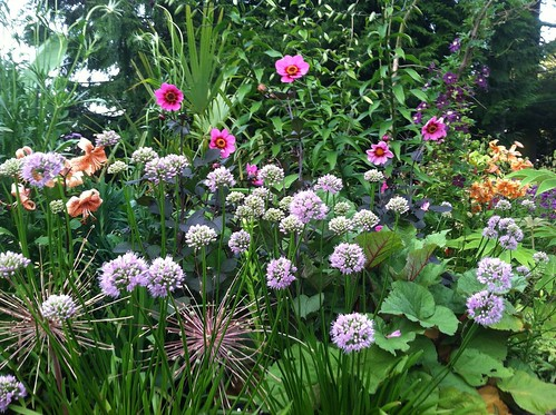 Summer Border at Landwave Gardens