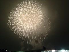 東京競馬場の花火大会がすんげぇデカイ花火でめっちゃ楽しい