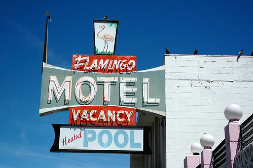 Flamingo Motel - Repost In Color