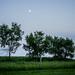 Farm Moon