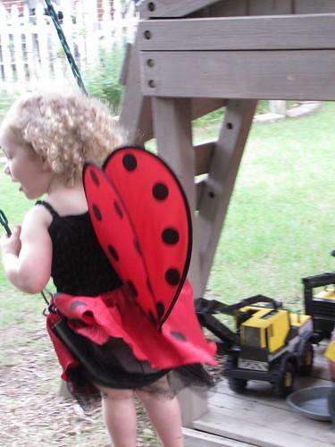 ladybug5