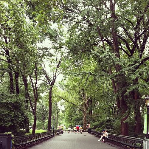 Central Park #blogher12