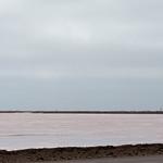 Salinas de sal rosa