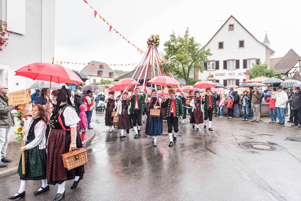 Winzerfest-Umzug_050
