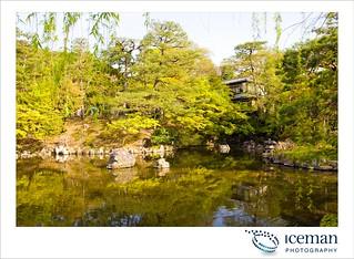 Ysaka Shrine  193
