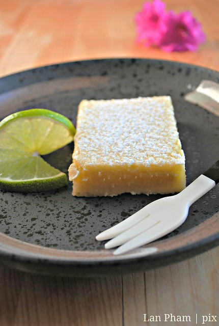 lime squares 2