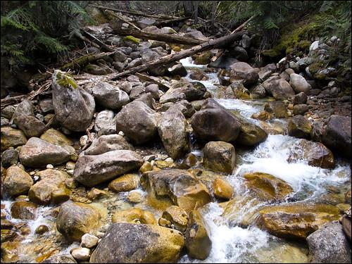 creek hiking steinvalley earlscreek bccreek