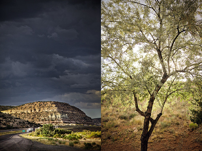 Arizona Landscape | Cross Country Roadtrip | 50 States Photography Challenge