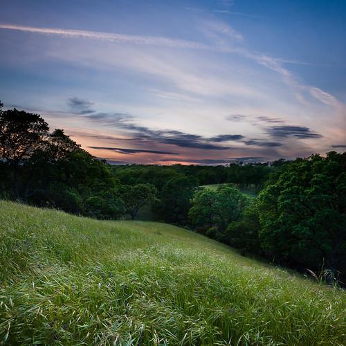 california ca sunset grass square landscape unitedstates country rollinghills oaktrees redbluff vertorama