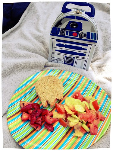 Star Wars picnic lunch