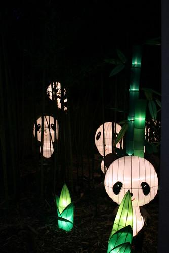 Panda Lanterns