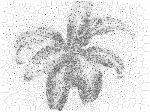 plant10k_vor