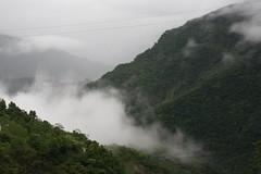 台灣美麗山林。
