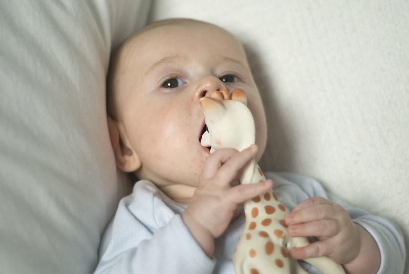 Viggo äter Sophie