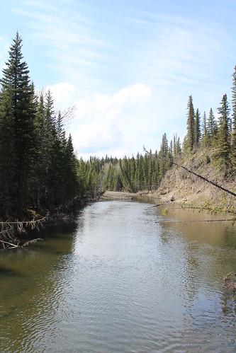 Sibbald Lake 168
