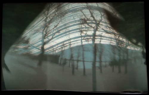 Six Month Solargraphy Exposure 2