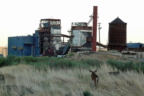 california mill abandoned 2004 rural lost closed jobs decay industy young deer norcal buck lumber spi lumbermill susanville sierrapacific lassencounty