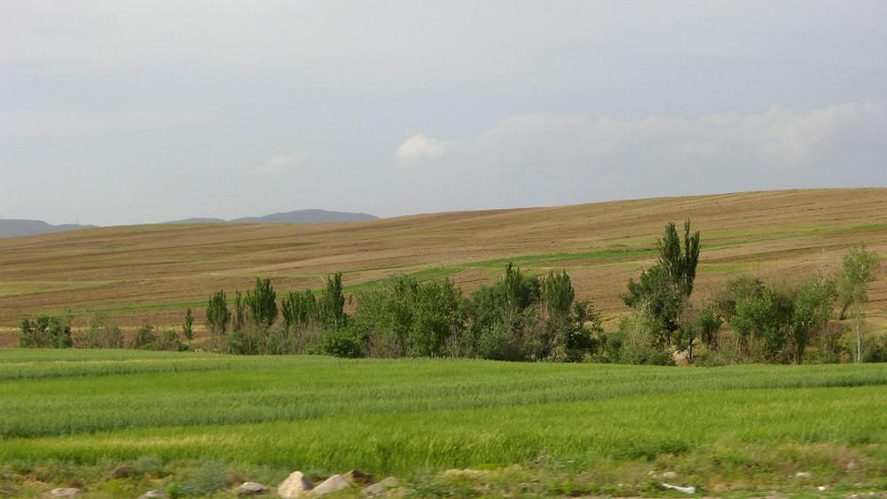 masuleh-tehran-L1040571