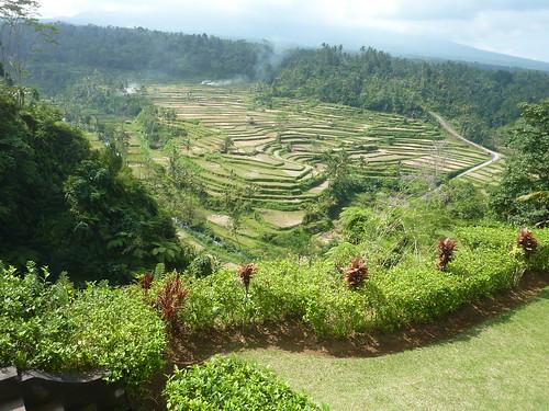 Bali-Besakih-Retour (2)