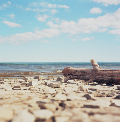 canada tlr film water river square log rocks ottawa olympus shore twotone olympusflex kodakektar100