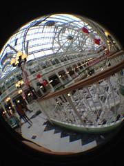 amusement ride(0.0), ferris wheel(0.0), dome(0.0), amusement park(0.0), world(1.0), fisheye lens(1.0), reflection(1.0), circle(1.0),