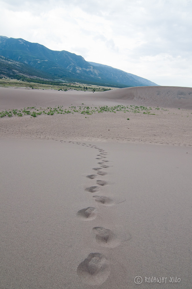 Walking on the great sand dunes
