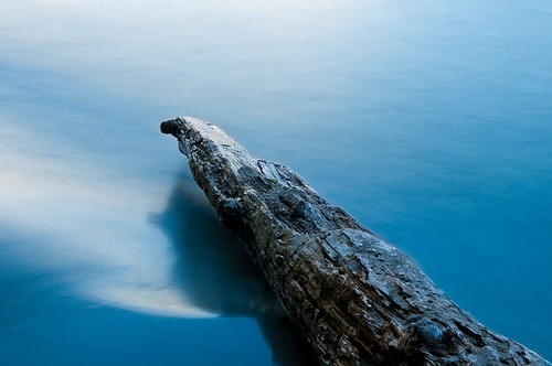 Log by petetaylor