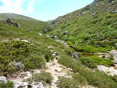 Traversée Frauletu-Giavingiolu : remontée du ruisseau d'I Pozzi juste avant la confluence Frauletu/Giavingioli