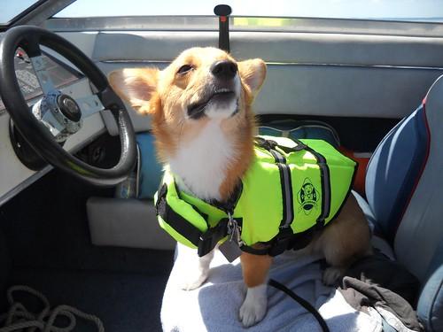 """Summer 2012 boating - Say """"Cheese!"""""""