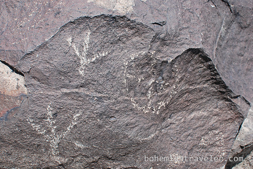 petroglyphs at three rivers Site New Mexico (3)
