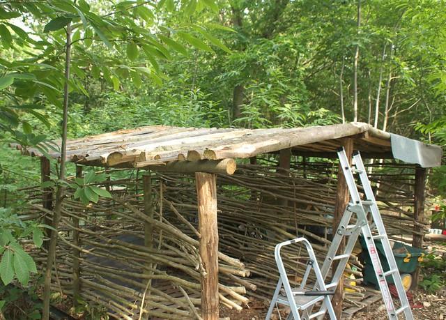 DSC_4172 firewood shelter