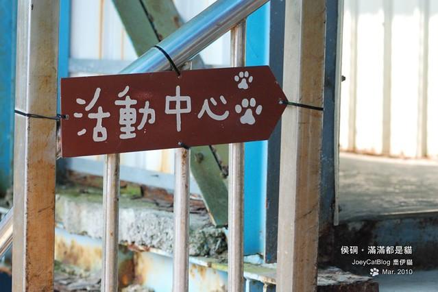 2010_0330_侯硐。滿滿都是貓DSC_0003
