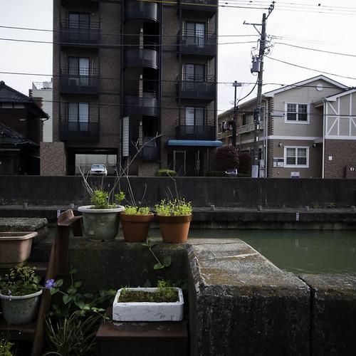 Riverside Potted Garden