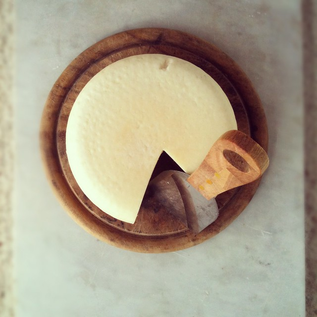Young Pecorino cheese