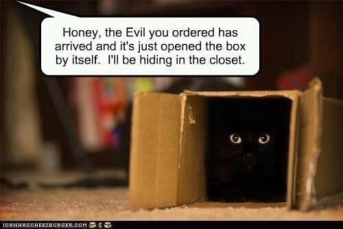 The evil your ordered has arrived...