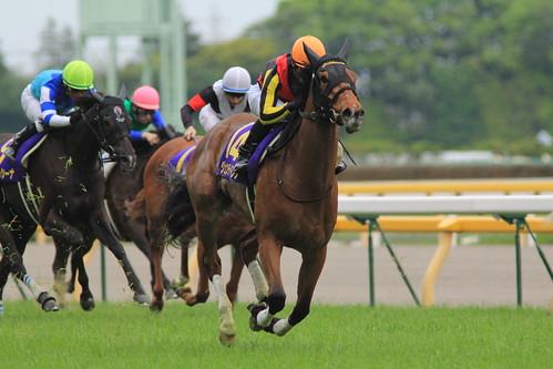 オークス勝ち馬 ジェンティルドンナ(川田将雅)