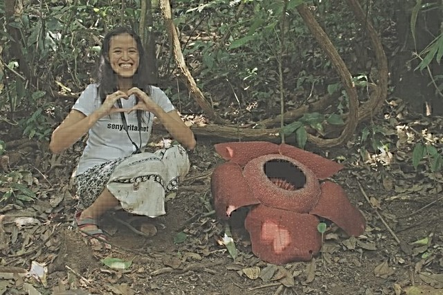 Mica and the Rafflesia