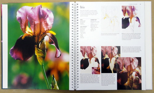Book: How to paint Watercolor Flowers, by Robin Berry, inside