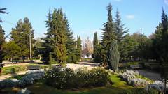 Parque chileno