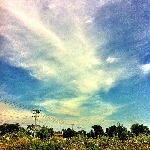 Hot day in Chicagoland today! Stay cool :) by Abigail Harenberg