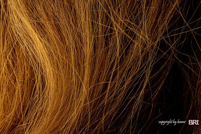 hair_of_gold