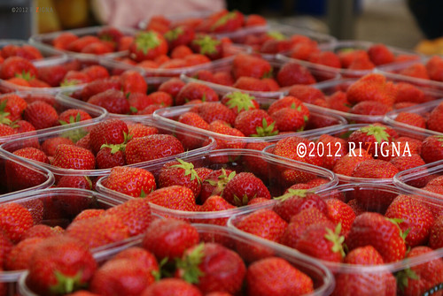 strawberries by SCOOP AND SNAP
