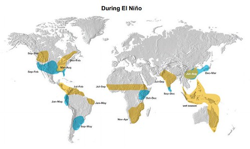 Impact of El Nino